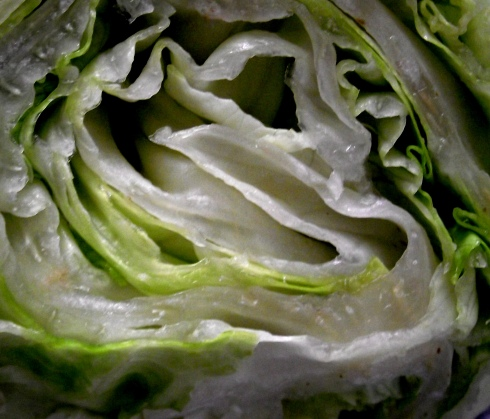 Lettuce made a nice lunch and a lovely layered photograph.